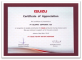 Isuzu - Recognition of Valuable Contribution for Isuzu Production during provious years 2010
